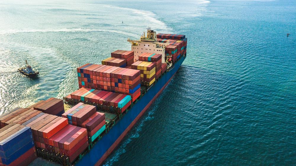 Información del manifiesto único marítimo