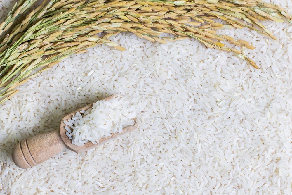 Comercio exterior de arroz